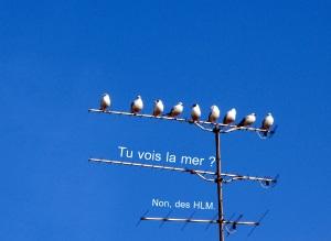 © Le Trop Mignon Blog